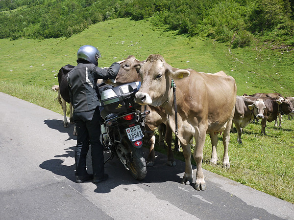 Motorcycle Trips